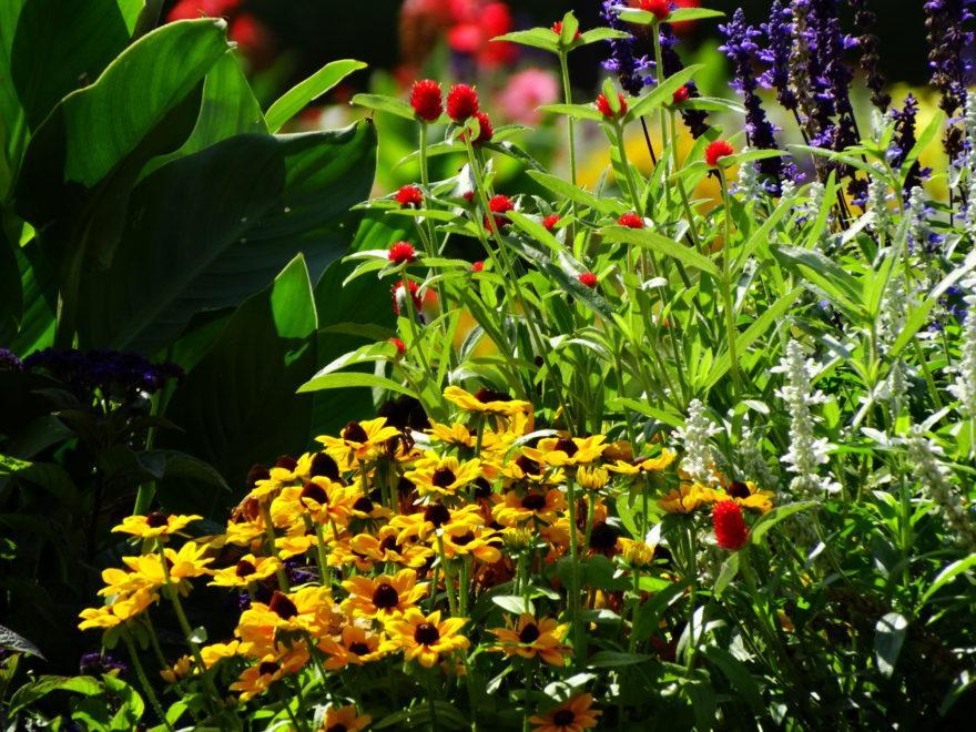 Umsatzsteuer beim Gartenbau – oder: die Pflanzenlieferungen für eine Gartenanlage